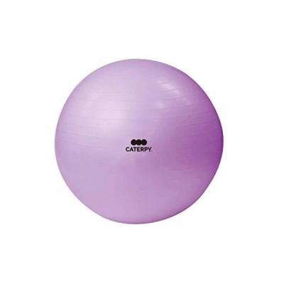CATERPY? FITNESSフィットネスボール CF-008 (直径55cm/パープル)正規品