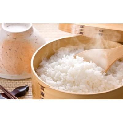 稚媛の里 慣行栽培米ひのひかり5kg