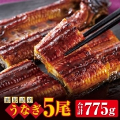 C3-2256/うなぎ 5尾 鹿児島産 1尾155g以上!ふっくらやわらか 鰻 蒲焼き!