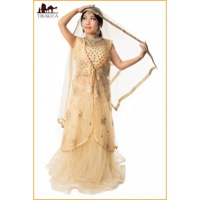 送料無料 ドレス インド パンジャビドレス パンジャービードレス インドのレヘンガドレスセット