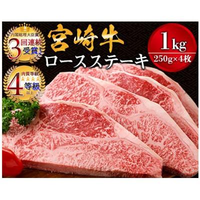 宮崎牛ロースステーキ(250g×4枚)&合挽きハンバーグ(100g×4個)セット《合計1.4kg》