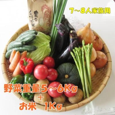 愛媛県産 11品目の季節野菜とお米セット