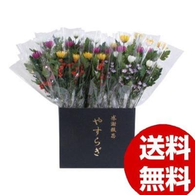ニューホンコン造花 やすらぎ菊 ラップ入・展示箱付 30本入  141405