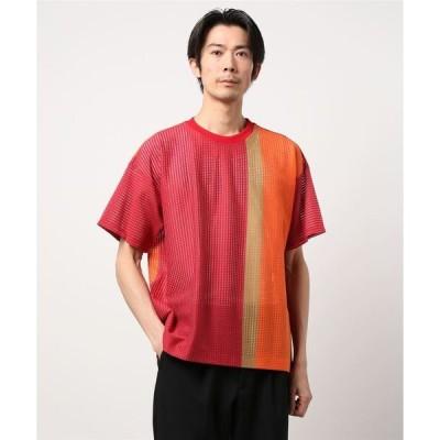 tシャツ Tシャツ シアーメッシュ/Tシャツ