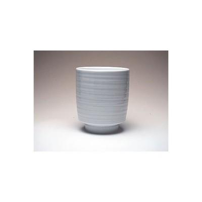 【白山陶器★5500円以上お買い上げで送料無料】 白山陶器  かんな彫大湯のみ あらすじ