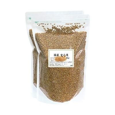 自然健康社 玄小麦 4kg 密封袋入り