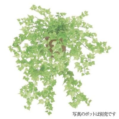 観葉植物 造花 ミニアイビーブッシュ L フレッシュグリーン 66cm 人工観葉植物 フェイクグリーン 光触媒 CT触媒 インテリア LEB-0115-L-FRGR (G-L)