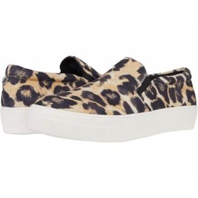 スティーブ マデン レディース スニーカー シューズ Gills-C Sneaker Leopard Canvas