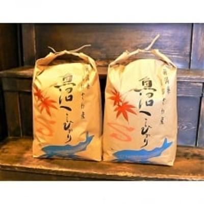 令和2年産《語り伝えられる地》南魚沼しおざわ産コシヒカリ10Kg(玄米)