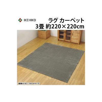 イケヒコ ラグカーペット 3畳 洗える 『イーズ』 グレー 約220×220cm 裏:すべりにくい加工 ホットカーペット対応 3963539