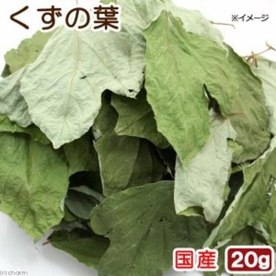 USAYAMA 国産 くずの葉 20g お徳用パック 小動物のおやつ 無添加 無着色 (ハムスター 餌)