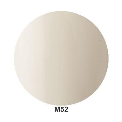 Raygel レイジェル カラージェル M52(アイボリー) / 4g(定形外 対応)