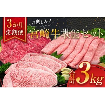 K12-21 牛肉≪3か月定期便≫お楽しみ!宮崎牛堪能セット(合計3kg)