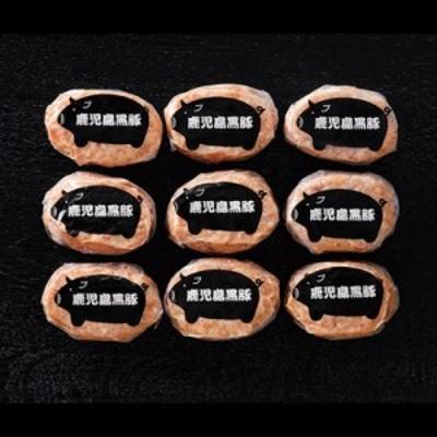 鹿児島県産黒豚ミニハンバーグ〔黒豚ミニハンバーグ80g×9〕