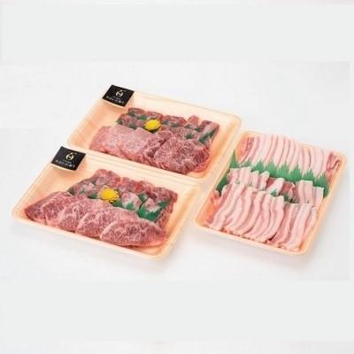 大分県の恵みいっぱい!牛肉と豚肉のコンビセット 1.1kg