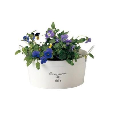 ポット ブリキ製 ホワイト 白 円形取っ手付 小 プランター植木鉢 ガーデニング