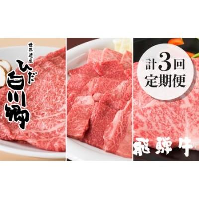 《定期便》飛騨牛 定期便 3ヶ月 3回お届け ごちゃまぜ 焼肉 すき焼き ステーキ しゃぶしゃぶ 和牛 肉 霜降り 赤身 セット 食べ比べ[S159]
