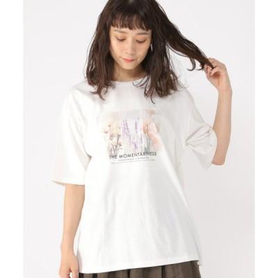 tシャツ Tシャツ ひんやりグラフィックTシャツ