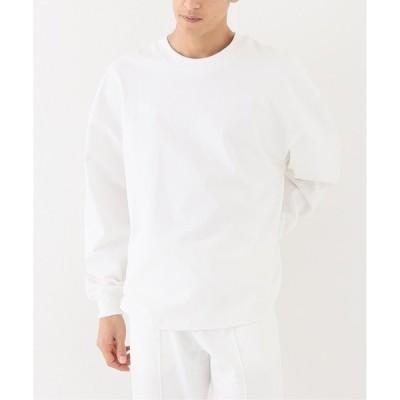 tシャツ Tシャツ 【WILLY CHAVARRIA / ウィリー チャバリア】WISM 別注 LS RUFF NECK T
