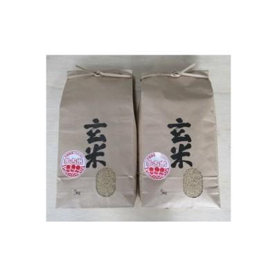 多古町 ふるさと納税 令和2年産 多古米コシヒカリ【玄米・選別済】10kg (5kg×2袋)
