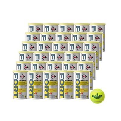 DUNLOP(ダンロップ) 硬式テニス ボール SAFETY TOP FORT [ フォート缶 ] 1缶(2球入) 30缶入り DFDYL30