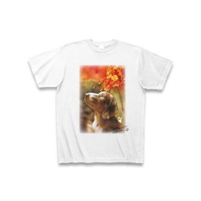 村松誠 ビッグコミックオリジナル2015年10月20日号「秋景色と犬」Tシャツ(ホワイト)