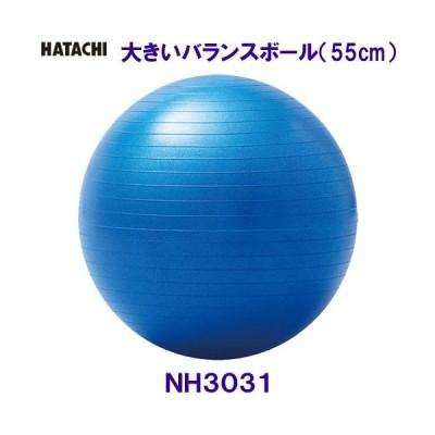 ハタチ HATACHI 大きいバランスボール 55cm NH3031 ブルー 自宅トレーニング 体幹 ロコレッチ/2020FW
