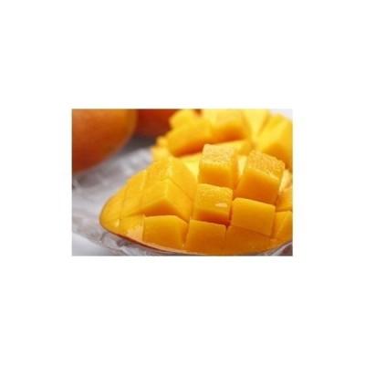 肝付町 ふるさと納税 鹿児島県産 美味しさまるごと冷凍マンゴー!約1kg