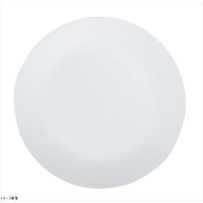 コレール プレート 皿 外径26cm 割れにくい 軽量 ウインターフロストホワイト 大皿 J110-N CP-8910