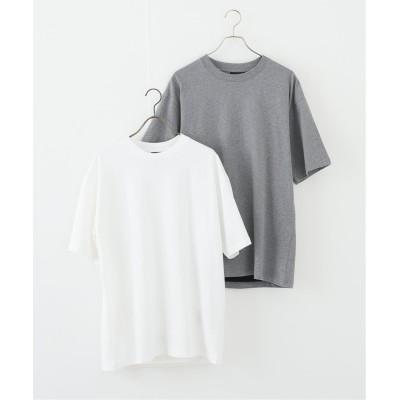 ボイスフロムベイクルーズ 【TAION / タイオン】SOLID T-シャツ 2枚セット グレーA L