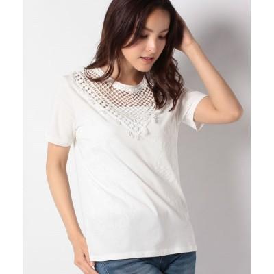 【デシグアル】 Tシャツ半袖 TROPIC THOUGHTS レディース ホワイト系 S Desigual
