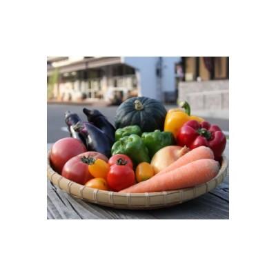 鮫川村 ふるさと納税 季節の野菜セット(5〜10種)