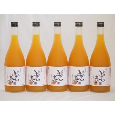 紀州完熟みかん梅酒 中野BC(和歌山県)720×5本