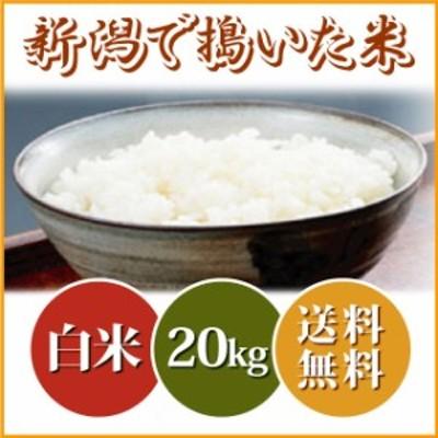 【小粒だからお買い得】新潟で搗いた米 20kg(10キロ×2袋) 送料無料 沖縄へは別途送料 ブレンド米 米 20kg 送料無料 お米 20キロ 安い