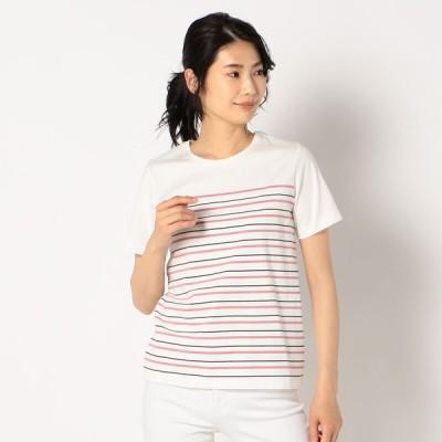 レディース 【在庫限り】オーガニック半袖パネルボーダーTシャツ サーモンピンク L