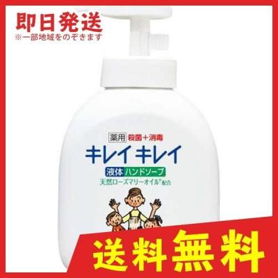 キレイキレイ 薬用液体ハンドソープ 250mL (ポンプ) (1個)
