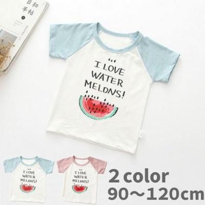 子供 キッズ 服 Tシャツ 半袖 スイカ 90-120cm ブルー ピンク 男女兼用 夏 こども hagmi