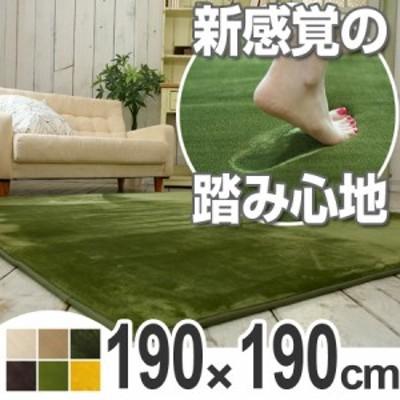 ラグ カーペット 低反発高反発フランネルラグマット 190x190cm ( 送料無料 ラグマット センターラグ 絨毯 じゅうたん 床暖房対応