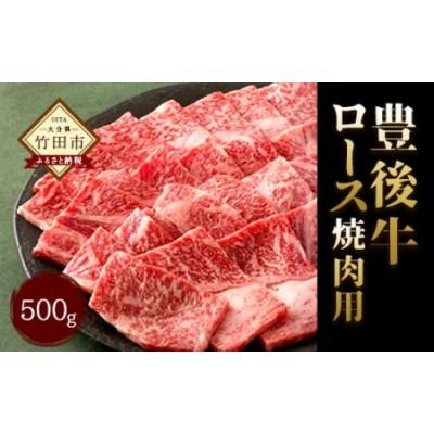 大分県竹田産 おおいた和牛 ロース 焼肉用 【500g】