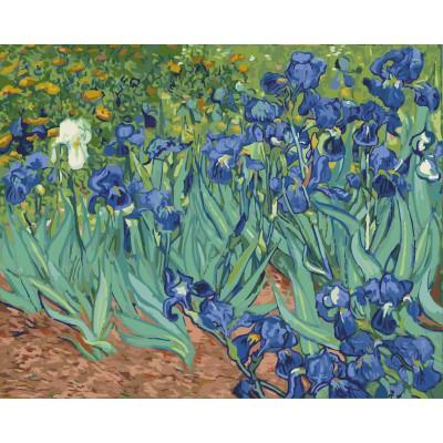 ArtLife 藝術生活 現貨 DIY 數字 油畫 彩繪  DT100 梵谷 鳶尾花  40X50cm
