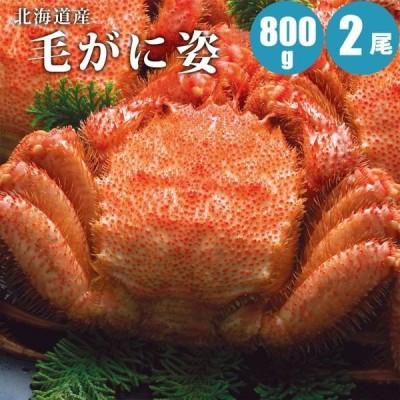 毛ガニ 800g 2尾 北海道 毛蟹 かに カニ 蟹 ギフト