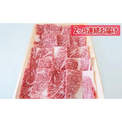 2ヶ月頒布会 A5等級飛騨牛焼き肉用500g ロース又は肩ロース肉