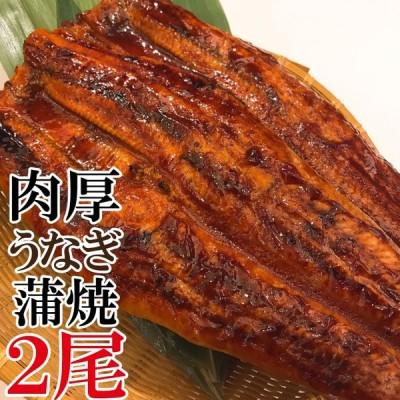 超特大 うなぎ 蒲焼き メガサイズ 360g-400g ×2本 ウナギ 鰻 ギフト