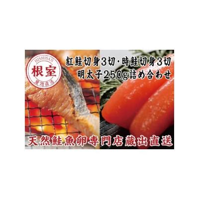 ふるさと納税 辛子明太子250g・紅鮭3切・時鮭3切 A-16018 北海道根室市