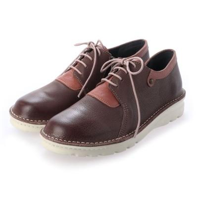 エーオーケー A-OK 【A-OK】レースの色コンビが鮮やかなダメージレザーのスポーツ靴《FE7101》(ダークブラウン)