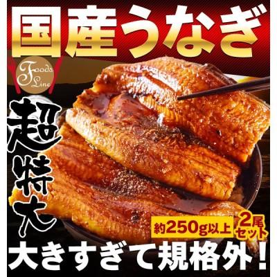 うなぎ 蒲焼き 国産 特大 250g2尾 鰻