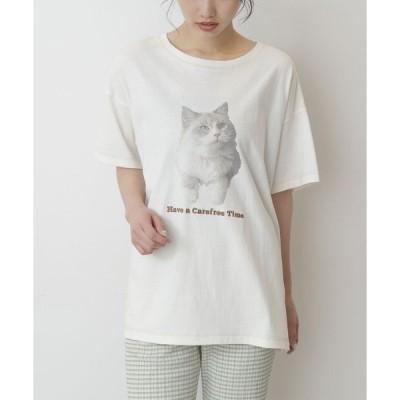 tシャツ Tシャツ ◆ネコプリントロゴ刺繍ビッグTシャツ
