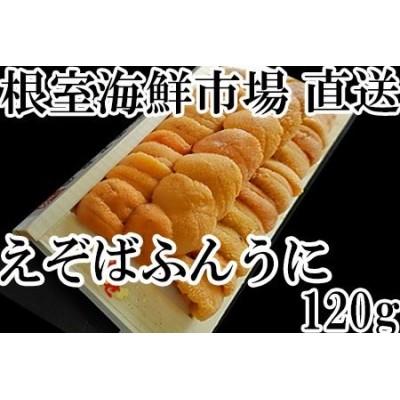 根室海鮮市場<直送>エゾバフンウニ(黄系)約120g×1折 A-28166