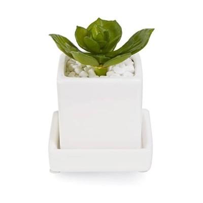GREENPARK-ミニエケベリア-白玉石-皿付ミニベース-フェイクグリーン