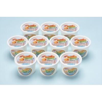 洋菓子 スイーツ 函館牛乳 クリーミーなメロンシャーベット10個セット ギフト セット 詰め合わせ 贈り物 贈答 産直 内祝い 御祝 お祝い